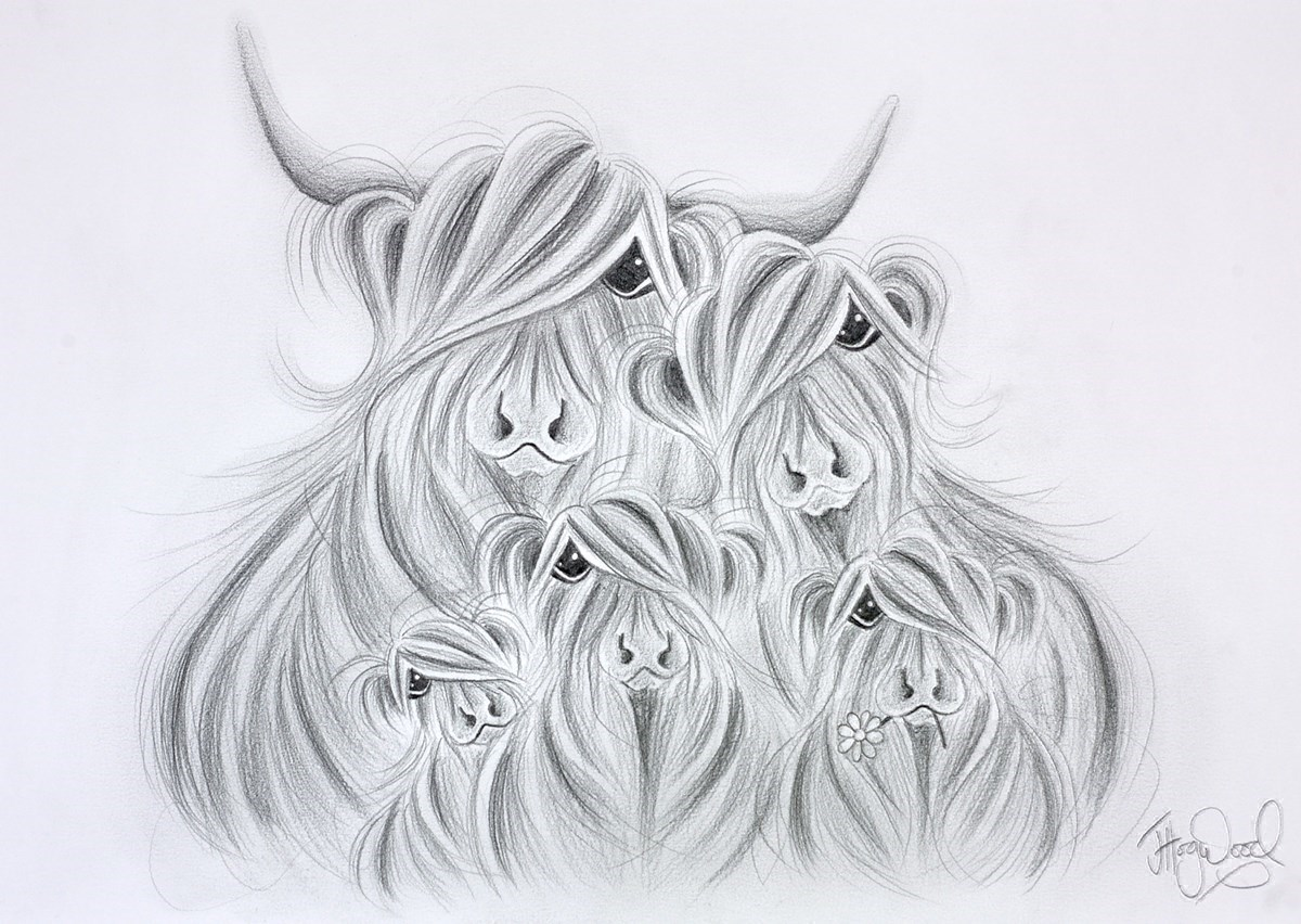 Our McMoo Fa-moo-ly Sketch by Jennifer Hogwood -  sized 17x12 inches. Available from Whitewall Galleries